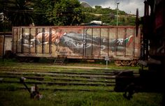 Axel Void, Oxaca, Mexico - The Best Street Art and Graffiti of 2014 (So Far) Graffiti Piece, Stencil Graffiti, Street Art Graffiti, Street Art News, Best Street Art, Amazing Street Art, Street Installation, Pop Up Art, Abandoned Train