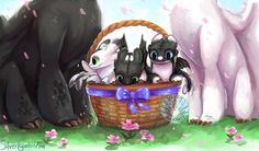Happy easter everyone! ✨🌷💖🌷✨ - Here's a basket of nightlights for ya XD - Can repost ➡️with credit⬅️💕 ---------------------… Httyd Dragons, Got Dragons, Dreamworks Dragons, Dreamworks Animation, Disney And Dreamworks, How To Train Dragon, How To Train Your, Night Fury Dragon, Basket Drawing