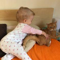 Uwielbiam poranki! Te momenty gdy budzimy się wszyscy razem i z uśmiechem zaczynamy dzień. To piękne chwile są. Serce rośnie gdy wita Cię uśmiech ukochanego i córki. Pełnia szczęścia normalnie!  #sohappy #kot #kotek #cat #instacat #instakot #koteczek #dziecko #instadziecko #baby #inastababy #instababygirl #instamama #toddler #toddlersofinstagram #toddlerlife #instatoddler #toddlers #ChicaMalaPL