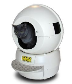 4 Favorite Automatic Litter Boxes For Our Feline Friends