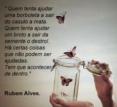 100 Melhores Imagens De Rubem Alves Thoughts Messages E Lyrics