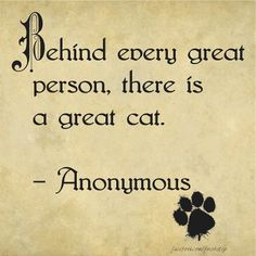 Behind every great person, there is a great cat. or vice versa :) I Love Cats, Big Cats, Cool Cats, Cats And Kittens, Cats Meowing, Crazy Cat Lady, Crazy Cats, Grand Chat, Amor Animal