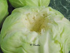 Varza congelata pusa la murat by Cerulina – cerulina Cabbage, Vegetables, Food, Bedroom, Canning, Room, Meal, Essen, Bed Room