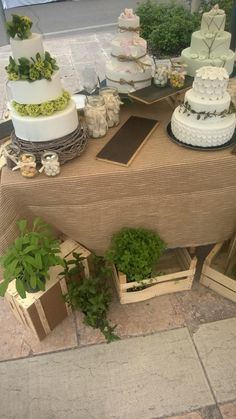 Buffet di torte a piani green natural