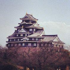 岡山城 (Okayama Castle) in 岡山市, 岡山県