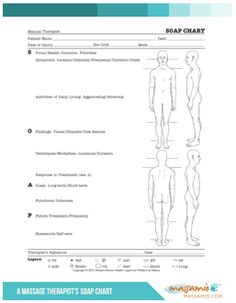 SOAP Notes Template for Massage Therapists   also a large section ...