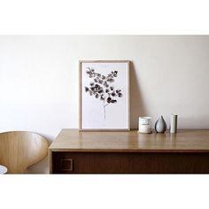 Cotton Plant print - By Garmi. Nordic and minimalistic interior setting, Danish Design.  Image by: Noden