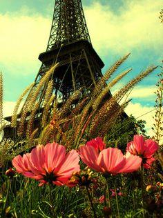Summer in Paris - Sommer in Paris - L'êté à Paris