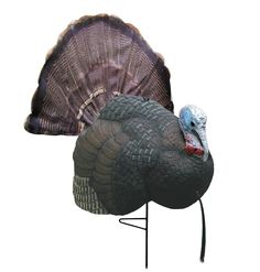 Primos Hunting 69041 Turkey Decoy, B-Mobile : Hunting Decoys : Sports & Outdoors