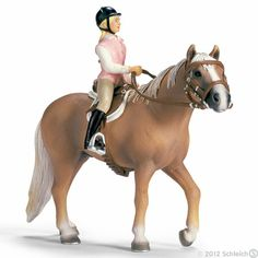Official Name: AHS Titanium · Barn Name: Ty · Gender: Stallion · Breed: Morgan · Ty is a strong horse and is often used for lessons an is barrel racing.