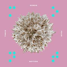 Thaio Songs EP 4 on Behance