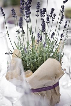 Hochzeitsdeko mit lavendel Wedding decoration with lavender Related posts: Outdoor Wedding Decoration 15 decoration ideas for rustic theme wedding 35 ideas for a rustic wooden wedding decoration 35 ideas for a rustic wooden wedding decoration Lavender Wedding Decorations, Wedding Colors, Wedding Flowers, Shower Centerpieces, Wedding Centerpieces, Wedding Table, Levander Wedding, Decoration Christmas, Deco Floral