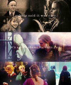 Always Harry Potter, Harry Potter Feels, Harry Potter Draco Malfoy, Harry Potter Ships, Harry James Potter, Harry Potter Jokes, Harry Potter Cast, Dramione, Best Harry Potter Fanfiction
