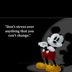 Walt Disney quote - Don't stress over anything that you can't change!