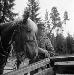 Estonian soldiers of the Finnish army rest in training at the training center for the fight against tanks in Huukhankamki, pin by Paolo Marzioli Military Training, Defence Force, Luftwaffe, Troops, Soldiers, Soviet Union, Armed Forces, Finland, Wwii