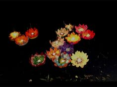 Floating Lanterns..