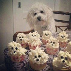 cupcakes-con-forma-de-animales-para-ninos-16.jpg