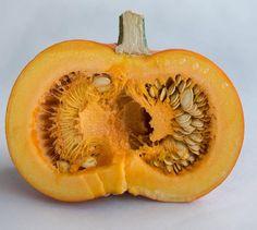 #ClippedOnIssuu from Coolmag #4 Jesień 2014 #pumpkin