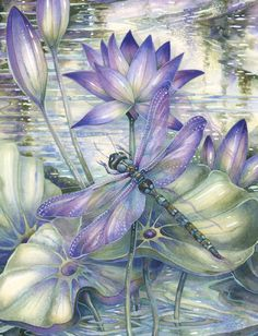 900 Dragonflies…How to Paint Them and What They Signify! A New Art Class By Jody Bergsma