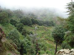 Galipán, cerro el Ávila, Venezuela.