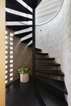 Image 31 of 49 from gallery of Blinco Street House / Philip Stejskal Architecture. Photograph by Bo Wong Staircase Handrail, Staircase Design, Staircases, Stairs, House Furniture Design, House Design, Hallway Inspiration, Interior Architecture, Interior Design