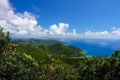 Hike in the Sage Mountain National Park, Tortola, BVI. Mount Sage rises more than 1,700 feet, the highest point in the British Virgin Islands, and is covered with undisturbed rain forest vegetation, including mahogany and kapok trees.