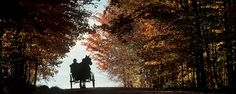 Hours 3 Pm, Year 7, O Canada, August 27, Close To Home, Being In The World, The Province, Amish, Farmers Market