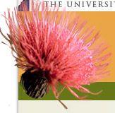 Test Your Knowledge - Wildflower Quiz...from Ladybird Johnson Wildflower Center website...very cool!