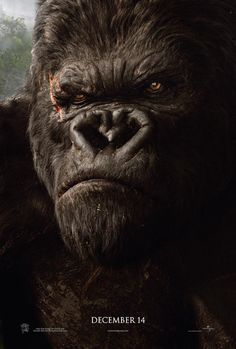 love this face - king kong