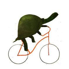 bicycle turtle