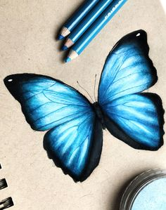 Art Drawings Sketches Simple, Pencil Art Drawings, Realistic Drawings, Colorful Drawings, Drawing Drawing, Colored Pencil Artwork, Color Pencil Art, Butterfly Drawing, Blue Butterfly