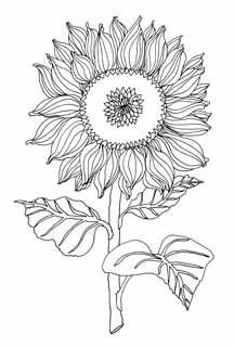 floral design download