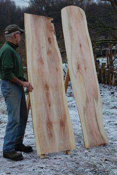 Een bord van Metasequoia. Licht van gewicht. Leuk als menubord, fotobord, prikbord (het hout is zacht).