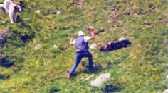 """Lombardia: #Brescia #uccisero il #cane a forza di bastonate: assolti padre e figlio. La Lav: """"Subito appello&... (link: http://ift.tt/2ikDinX )"""
