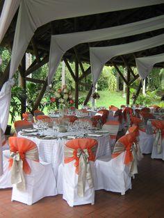 DECORACION EN ROSAS COLOR BLANCA Y SALMON Jazz Wedding, Dream Wedding, Wedding Decorations, Table Decorations, Chair Covers, Salmon, Destination Wedding, Cata, Prado
