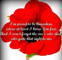canadian poppies for remembrance day Remembrance Day Quotes, Remembrance Day Poppy, Remembrance Day Pictures, I Am Canadian, Canadian History, Canadian Flags, Canadian Beer, All About Canada, Canadian Soldiers