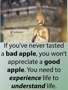 During the ancient times until now, people practice meditation because of its provided advantages. Incorporating meditation as part of your daily life can make Wisdom Quotes, True Quotes, Best Quotes, Funny Quotes, Happy New Year Quotes Funny, Buddha Quotes Inspirational, Positive Quotes, Best Buddha Quotes, Little Buddha