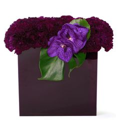 no wonder I'm not good with flowers, this would never occur to me!   violet carnations, vanda orchids, and tropical foliage in a plum lucite box