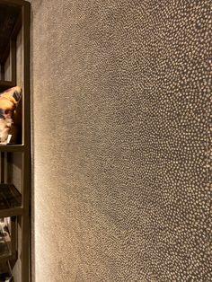 Accent Walls In Living Room, Accent Wall Bedroom, Kitchen Wallpaper, Wall Wallpaper, New Wall, Accent Wall Designs, Earthy Home Decor, Door Murals, Home Room Design
