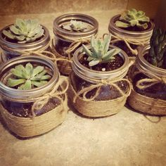 DIY Mason jars flower pots – house decorations – Famous Last Words Mason Jar Succulents, Mason Jar Flowers, Diy Flowers, Flower Pots, Flower Diy, Pot Mason Diy, Mason Jars, Mason Jar Gifts, Pots Mason