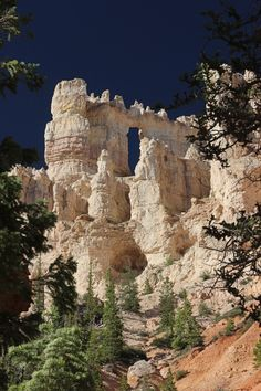 "White Wall of Bryce ~ Bryce National Park, Utah ~ Miks' Pics ""Nature Scenes lll"" board @ http://www.pinterest.com/msmgish/nature-scenes-lll/"