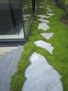 Crazy Paving, Outdoor Plants, Outdoor Decor, Flagstone, Pavement, Garden Paths, Stepping Stones, Outdoor Living, Sidewalk