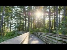 There is Sunshine in My Soul Today - Mormon Tabernacle Choir - YouTube