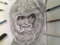 Realistic Gorilla Drawing Hi everyone, this is is a time lapse showing you how I drew this realistic gorilla head. I had a lot of fun drawing this realistic . Cool Pencil Drawings, Cool Stuff, Watch, Link, Clock, Bracelet Watch