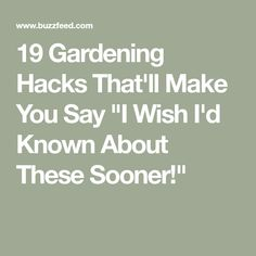 """19 Clever Gardening Hacks That'll Make You Say """"I Wish I'd Known About These Sooner! Pill Bug, Smart School, Old Farmers Almanac, Dawn Dish Soap, Fun To Be One, How To Make, Organize Fabric, Garden Quotes, Garden Sayings"""