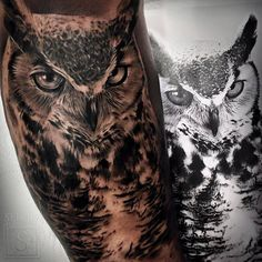 Tatuaje de un búho de estilo black and grey.