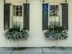 Charleston Window Boxes   Windows with shutters and window b…   Flickr