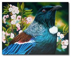 Tui in Blossoms by Tania Verrent Tui Bird, Animal Magic, Kiwiana, Realistic Paintings, Hobbies And Crafts, Bird Feathers, Painting Techniques, Beautiful Birds, Art Forms