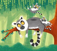 Louise Forshaw - Lemurs