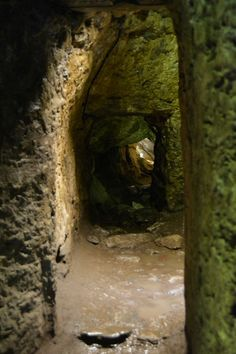 Blarney Castle - Cave, Co. Cork, Ireland